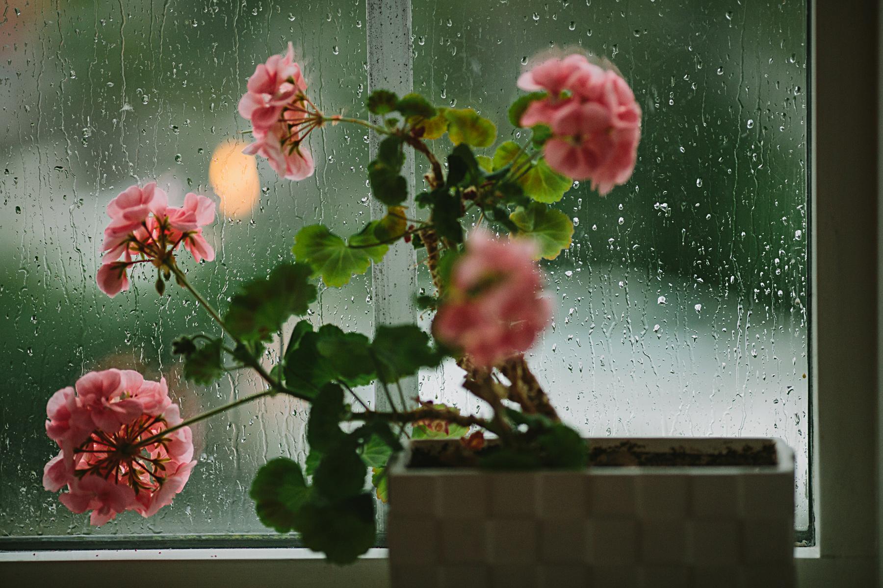 regn p fönstret