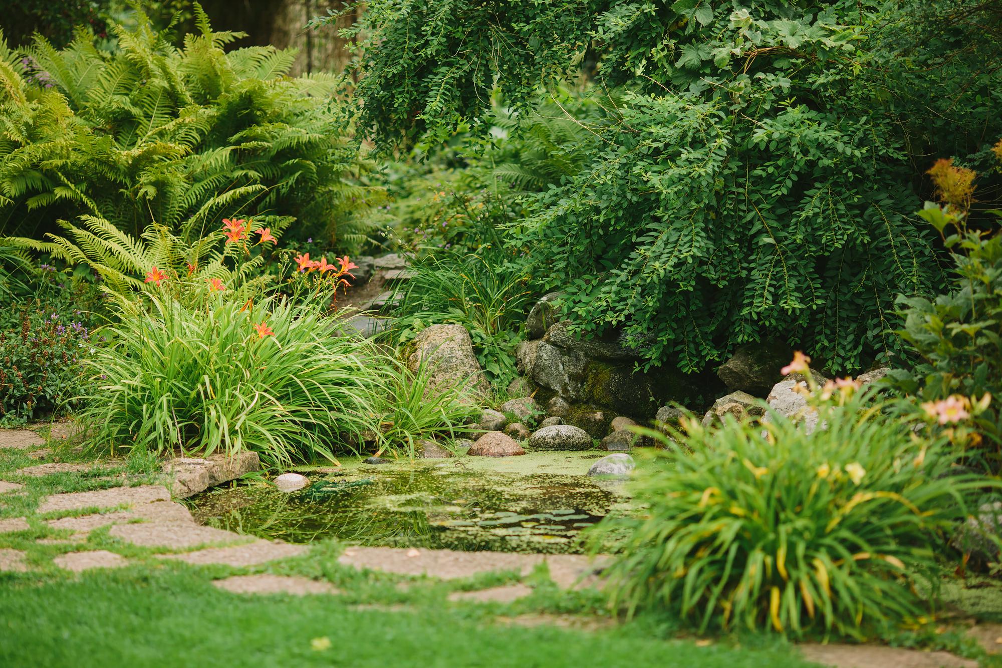 dammen i botaniska trädgården